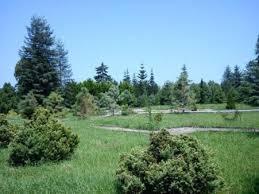 تحقیق اکولوژی گیاهان زراعی