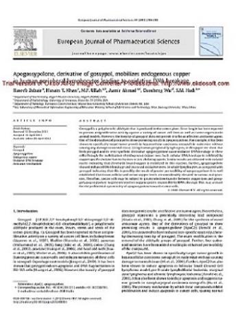 مقاله آپوگوسیپولون، مشتق شده از گوسیپول، مس درونزاد در لنفوسیتهای محیطی انسان را به حرکت درمیآورد که منجر به شکستگی DNA اکسیداتیو میشود
